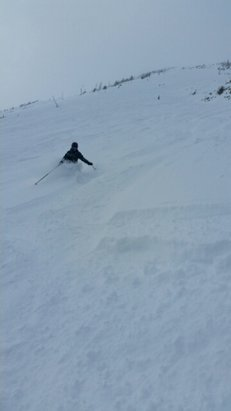 Castle Mountain - Wednesday was the best powder of the season! And no crowds, perfect weekday. - © anonymous