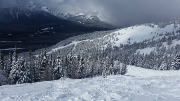Lake Louise - Incredible conditions today. Knee deep powder.  - © anonymous