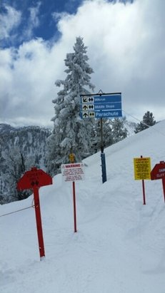 Solitude Mountain Resort - Epic conditions on Tuesday. Fresh powder with sun in the afternoon. - © anonymous