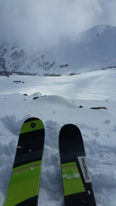 Marmot Basin - lots of fresh snow to be found all day - © traskj1611