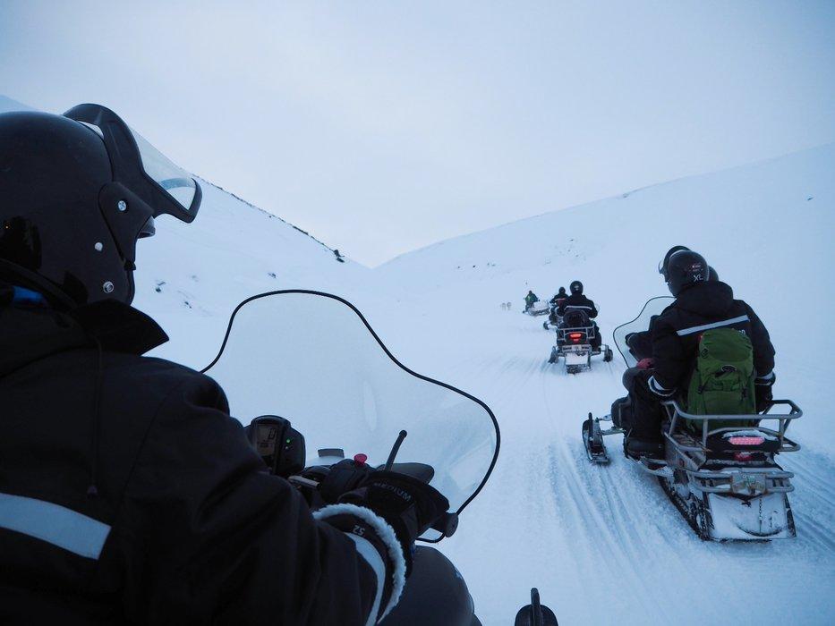 Snøscooterkjøring hører med når man besøker Svalbard. Av og til måtte gruppen vente på reinsdyr i sporene - så eksotisk! - © Vigdis Skogly