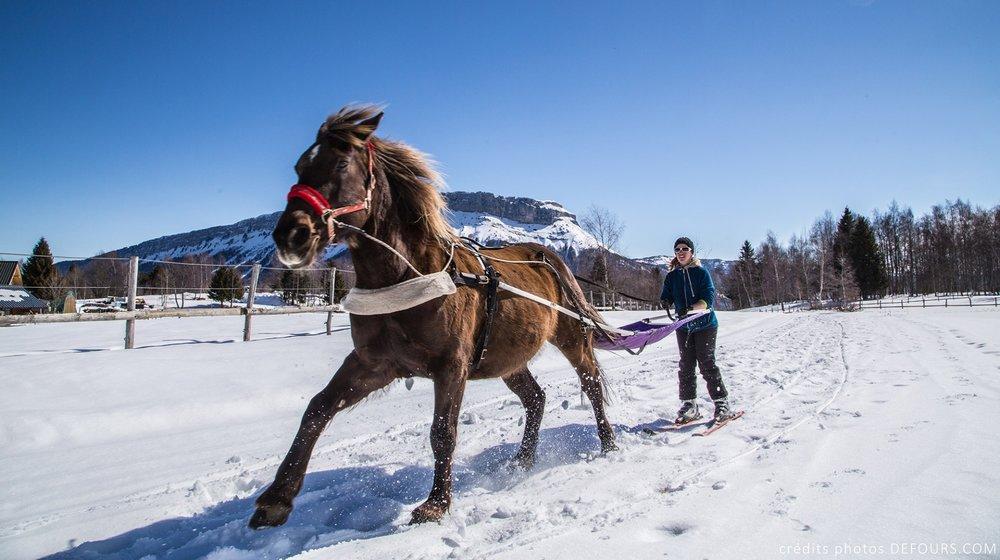 Découverte et initiation au ski joering sur le plateau nordique de Savoie Grand Revard - © Station de Savoie Grand Revard