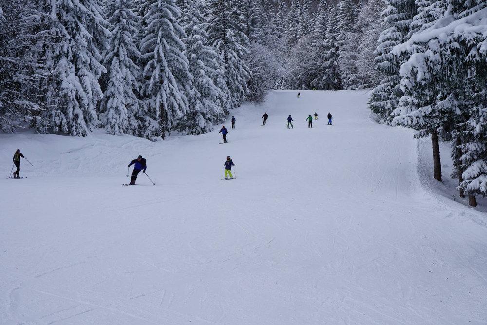Im Skigebiet Götschen geht es durch verschneite Wälder