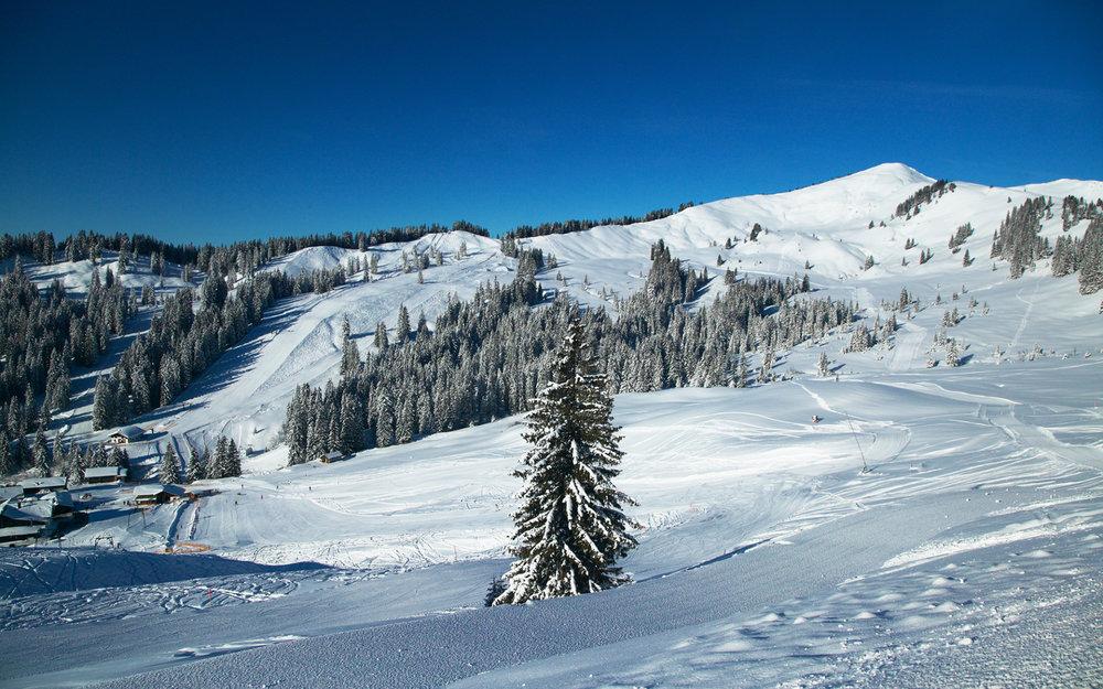 Das Skigebiet Grasgehren bietet euch elf Pistenkilometer - © © Grasgehrenlifte Betriebs GmbH