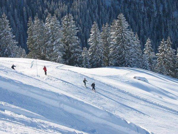 Pistenspaß im Skigebiet Diemtigtal Grimmialp. - © Grimmialp Bergbahnen Diemtigtal
