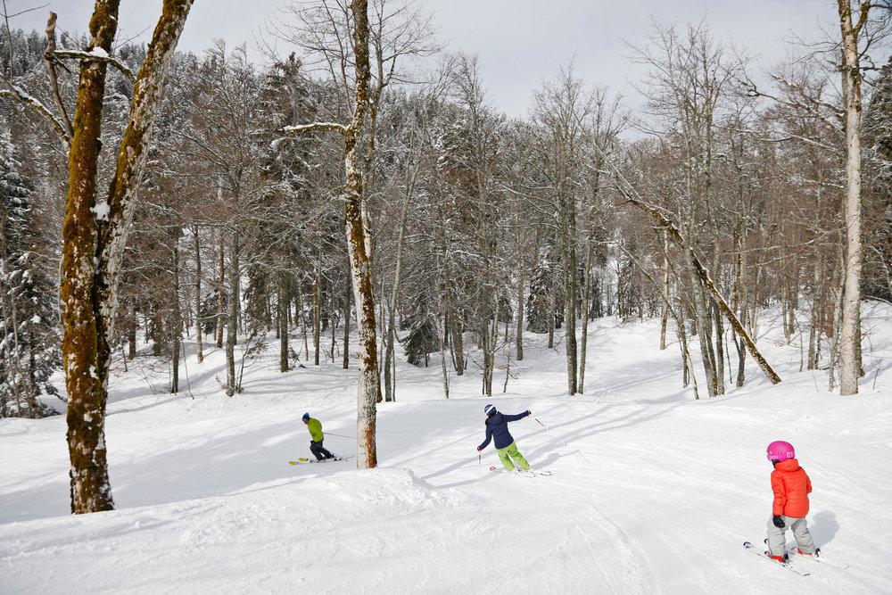 Ski ludique à travers la forêt environnant les pistes de ski d'Autrans - © Station Autrans-Méaudre en Vercors