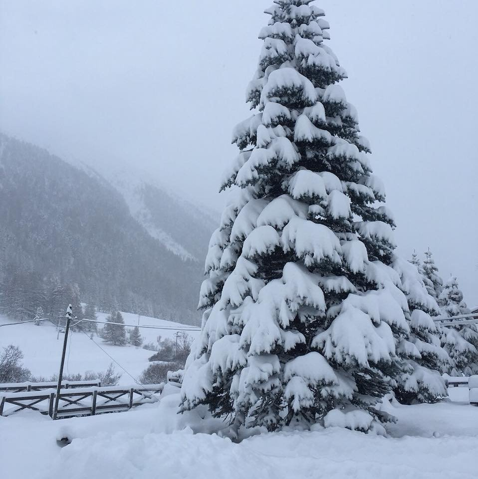 Fresh snow in Livigno, 6.11.2017 - © Livignolife | facebook