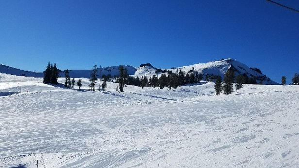 Squaw Valley - Alpine Meadows - Groomed, only top of mountain seems worth it. Tram required to get back down.  - © Corkapatamus