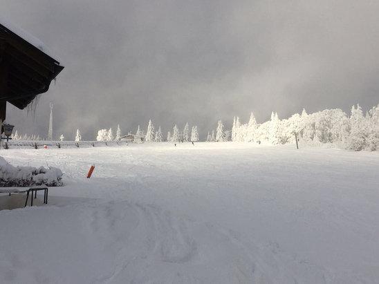 Skizentrum Mitterdorf - War ein guter Einstieg heute in die Saison. Etwas neblig anfangs aber hat sich zum Nachmittag gut aufgel - © Claudia