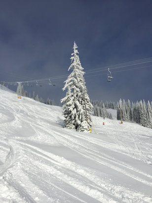SilverStar - Super fabulous day!  16 cm new snow, sunshine, great visibility.   Can't beat it! - © Allison Jerome's iPhone