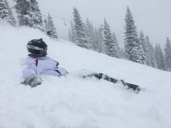 Jackson Hole - Awesome pow today  - © Franck's iPhone