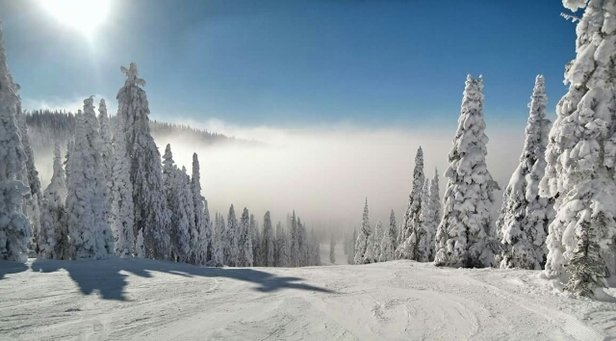 Whitefish Mountain Resort - Day after day of clear, cold, conditions.  100% open, great skiing. - © local skier