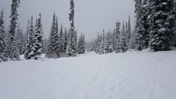 Sun Peaks - Frest snow on the  mountain all day Sunday the 7th. - © Michael from Texas