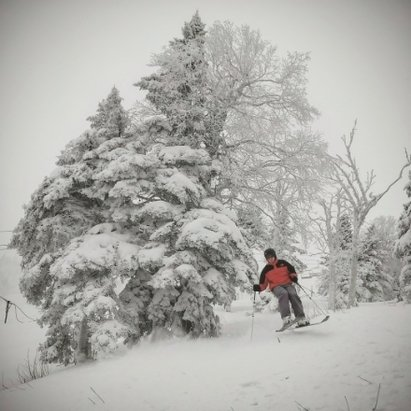 Killington Resort - bear mtn was a bit wind scoured, found wind repository on big Dipper, canyon quad closed due to ... frugal business practices. overall a 7/10 for VT. watch for a thaw Thursday.... not horrible not stellar. - © ak.hermit