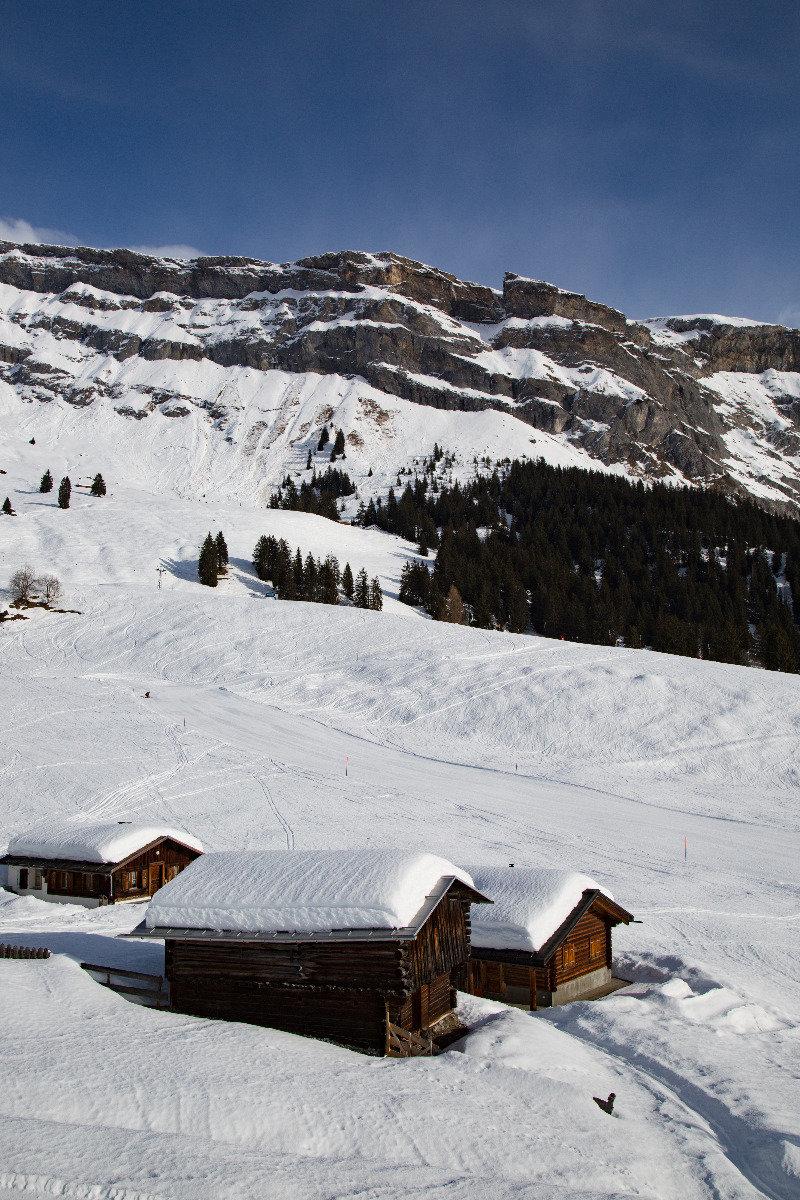 Urtümlich und ruhig geht es auf den Südhängen oberhalb von Flims zu. Zwei Sessellifte bringen euch bis zum Berghaus Naraus auf knapp 1900 Meter hinauf. - © Skiinfo