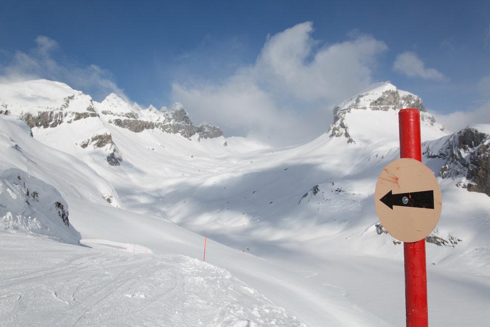 Start der schönen Abfahrt Nr. 10 vom Grauberg - © Skiinfo