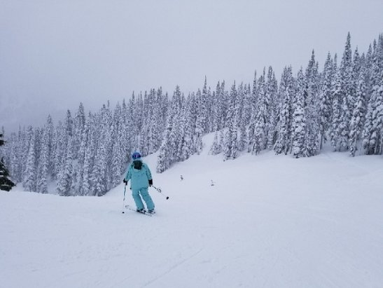 Crystal Mountain - 1/24/18 Snow depth is pretty good, but high moisture / temperatures (around 34 - © M.A.