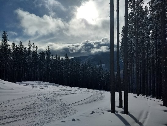 Lookout Pass Ski Area - amazing snow on kpnd $9.53 day.   bluebird skies - © jimmer