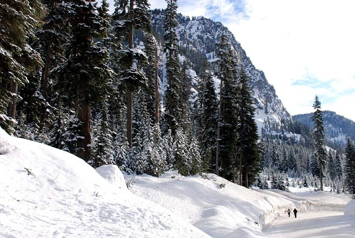 The road to Alpental, WA.