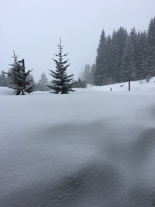 Flaine - Fresh snow over night and still going