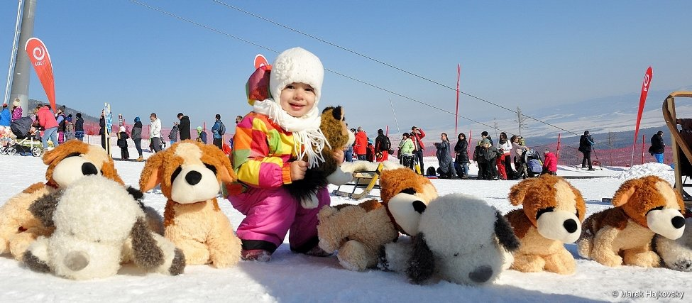 Snežné psy v Tatranskej Lomnici - © Marek Hajkovský