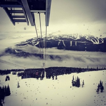 Whistler Blackcomb - was a decent day but many parts of both mountains covered in thick fog..  light snow showers thru the day. snow gets heavy at bottom..  yet going again tomorrow - © TrashPanda