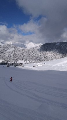 Villars - Gryon - perfect back country conditions after 30cm snowfall - © anonymous