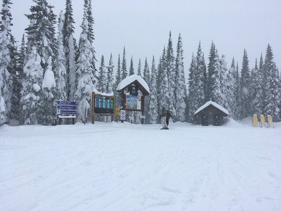Sun Peaks - Snowed last night and all day today, fresh powder everywhere, visibility a little poor at the top but a great day all round.   - © Chris' iphone