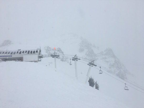 Squaw Valley - Alpine Meadows - I'd say Squaw got a good 8 inches of dry powder today. Cold but fun skiing.  - © iPhone