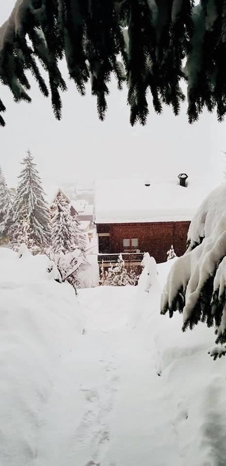 Ein halber Meter Neuschnee in Zermatt (04.01)