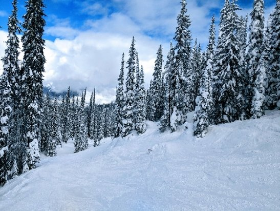 "Revelstoke Mountain Resort - Our first time at ""The Stoke"".  We've had a couple inches fresh powder every day, no wind and moderate temps.  Great ski trip.  We'll be back for sure! - © Paul from Maryland"