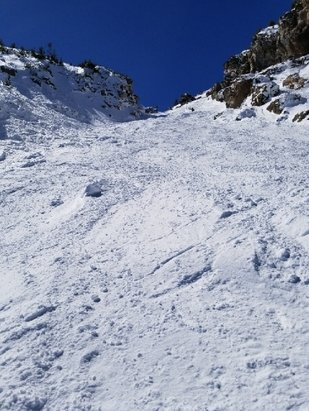Mammoth Mountain Ski Area - Skied avalanche on Dry Creek open yesterday. Great snow. incredible to see. - © anonymous