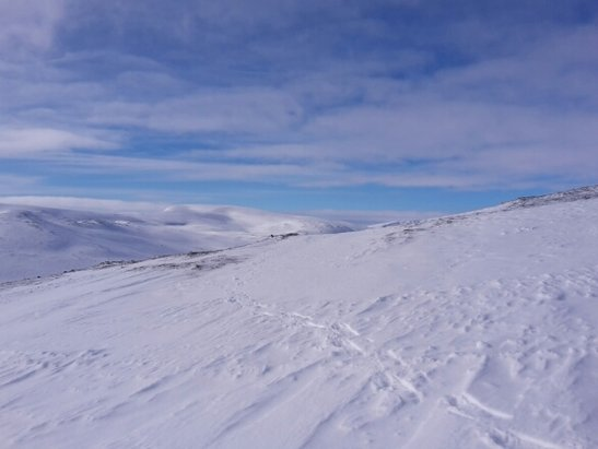 Glenshee - Great day. All runs open, with off piste options. The season should last a while given the snow depth.  - © Simonofyork