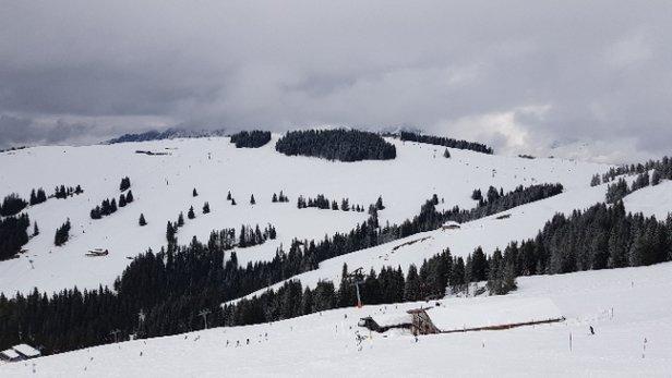 Brixen im Thale - SkiWelt - Prima. Beneden wat minder maar boven prima ski - © skiër