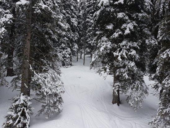 Carezza Ski - Ancora buona neve - © Dyno
