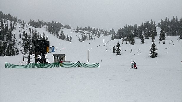 Hoodoo Ski Area - Snow might be a little wet but still lots of fun! - © Brad Ringham and my kids