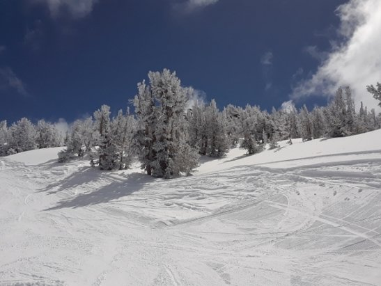 Heavenly Mountain Resort - Great winter conditions! But Cal side closed for the season as us Comet lift.   - © anonymous