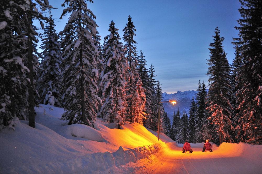 Die Rodelbahn Königslehen ist an zwei Tagen in der Woche beleuchtet - ©  Zauchensee Liftgesellschaft | C.Schartner