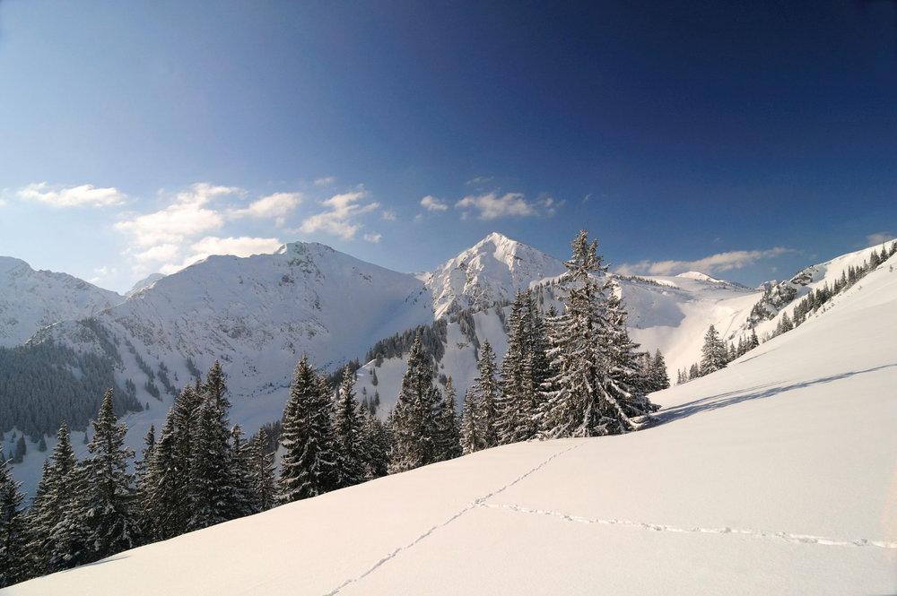 Winterlandschaft im Tannheimer Tal - © TVB Tannheimer Tal_Wolfgang Ehn