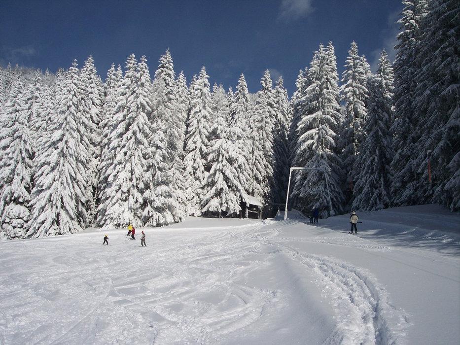 Bergstation Schlepplift Sonnberglift