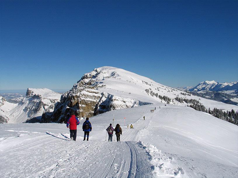 Winterwandern in Beatenberg - © Beatenberg Tourismus