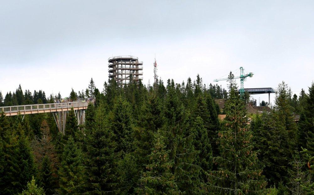 Výstupná stanica novej kabínkovej lanovky je situovaná pri turistickej vyhliadkovej atrakcii Chodník korunami stromov - © Bachledka Ski&Sun