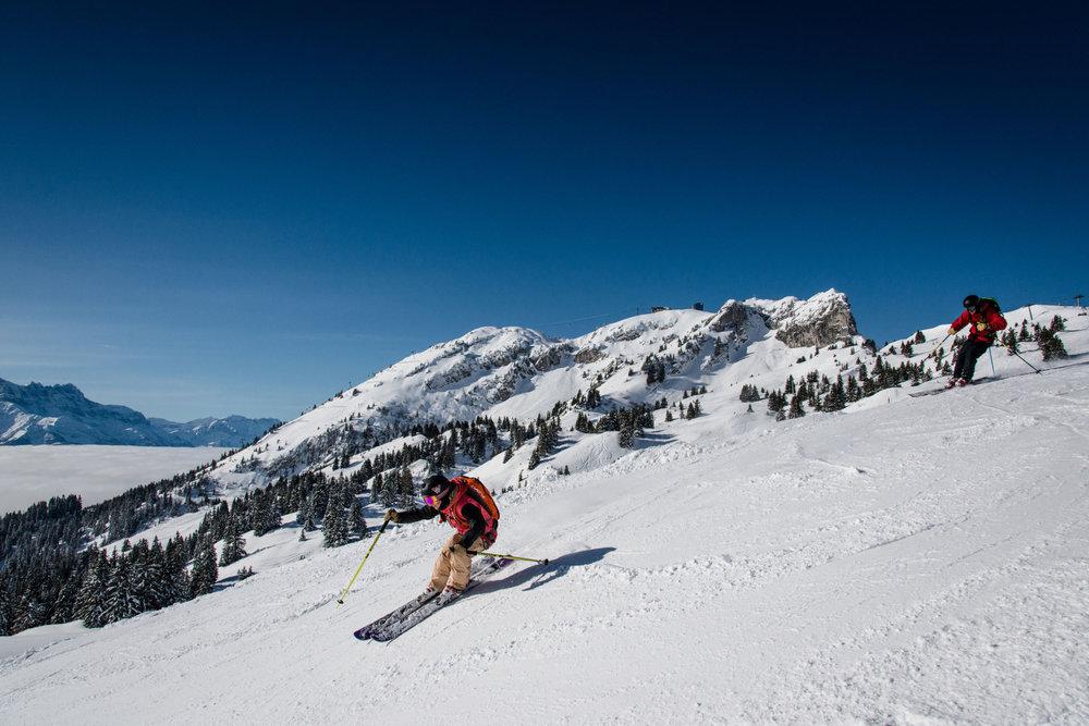 Conditions de ski idéales (soleil et neige fraîche) sur les pistes de ski de Leysin - © D.CARLIER / davidcarlierphotography.com