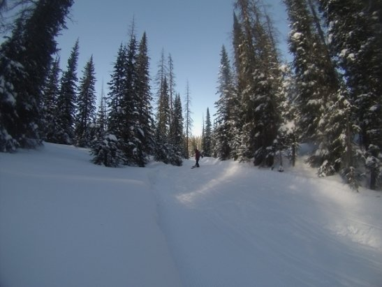 Wolf Creek Ski Area - conditions were great! lots of pow on trails in the trees! Lift lines went quick! - © anonymous