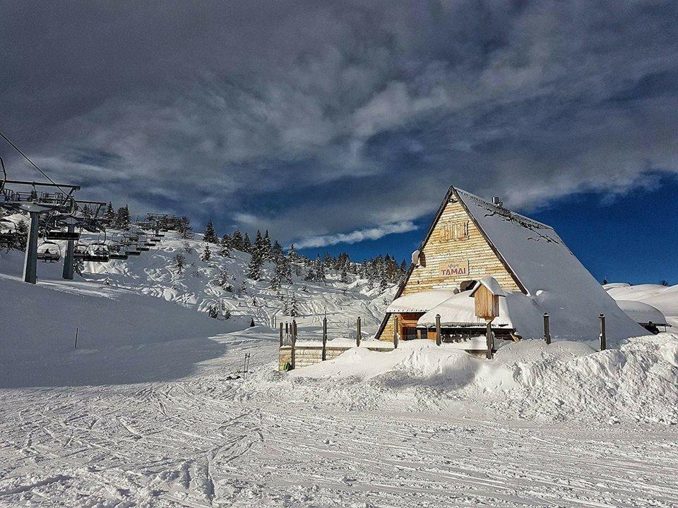 Sciare in Friuli Venezia Giulia a Ravascletto - Zoncolan  - © Rifugio Tamai Facebook / Ph @laviniavane