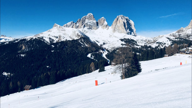 Canazei - Belvedere - Good conditions, little bit compact, fresh powder due to fall tonight 5cm  - © Mike