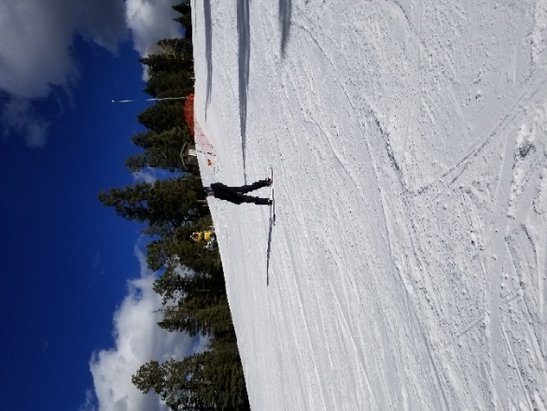 Angel Fire Resort - We had a great time. No crowds. Very few runs open on the front side. What was open was kinda icy, especially on the back slope. But the forecast for snow this week should help. - © mearcat