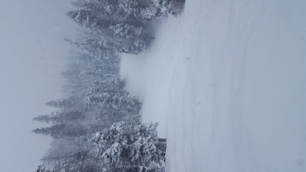 Sipapu Ski Resort - Great powder, yesterday. Very nice and helpful employees.    - © itsjaylow