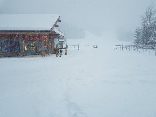 Nakiska Ski Area - around 30cm of new snow has fallen in yhe past 24 hrs - © anonymous