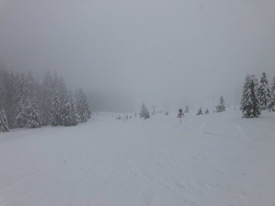 Garmisch Classic - Yes, they have snow.... - © Vince Hankins iPhone